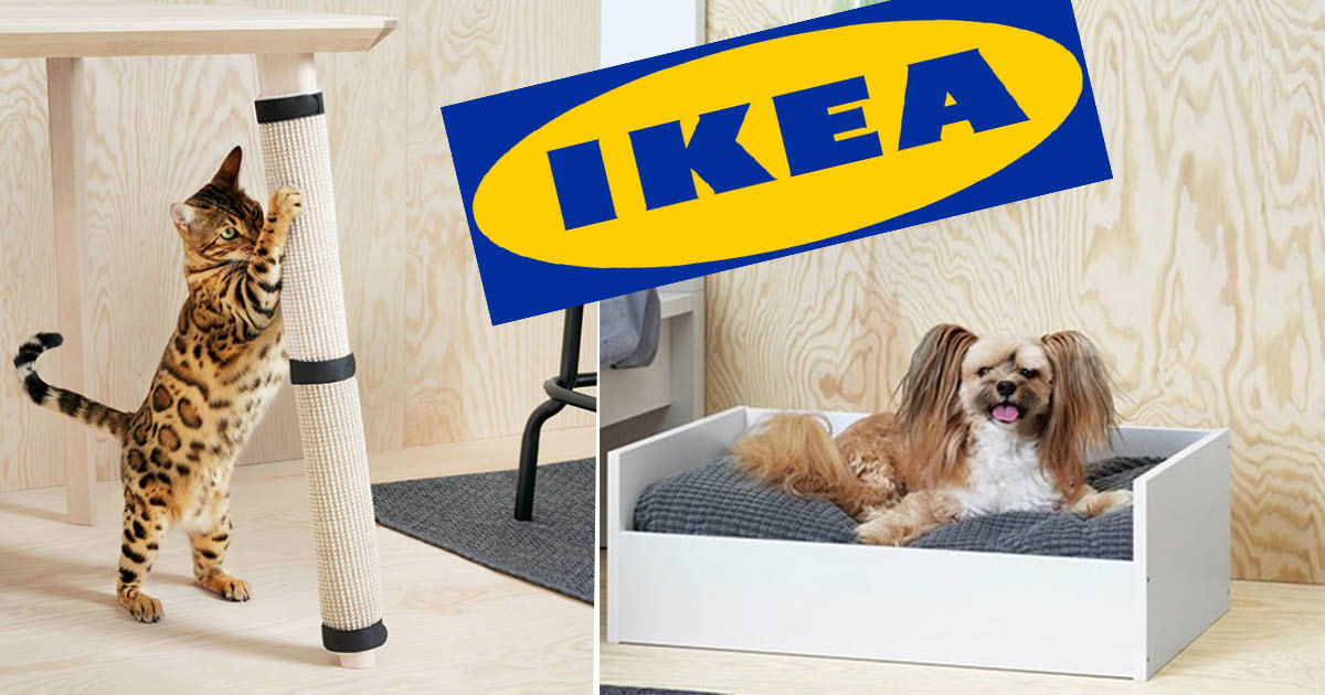 Ikea Just Released A Furniture Collection For Animals And